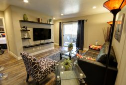 702-Housing-Executive-Condos-Las-Vegas-Flamingo-Palms-Villas-Autumn-Villa-Couch-min